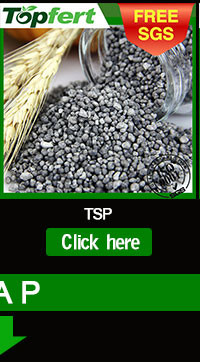 DAP 18-46 fertilizer grade