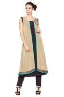 Designer Long Pakistani Style Party wear Long Kurti