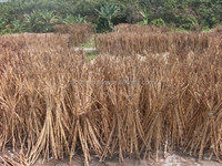 Raw Rattan Cane material mix