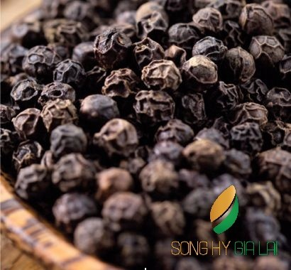 Black pepper 500g/l FAQ high quality