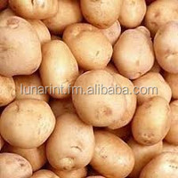 Potato From Bangladesh