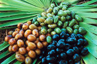 Saw palmetto extract -40%