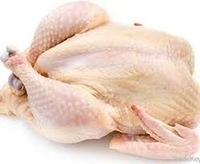 TOP Brazilian Quality Halal Frozen Whole Chicken and Parts / Gizzards / Thighs / Feet / Paws / Drumsticks