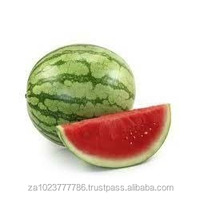 Fresh Fruit-Water Melon high quality Fresh Watermelon New crop Fresh Fruit-Water Melon HOT SALES