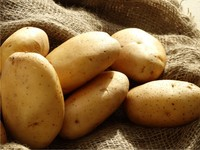 Fresh Indian Potato 3797