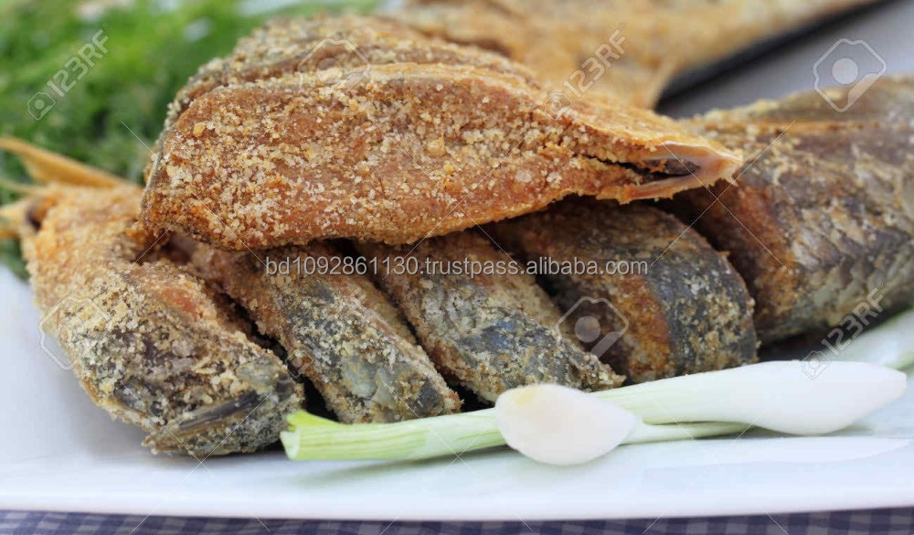 Dry fresh Natural salted HILSHA FISH Export quality