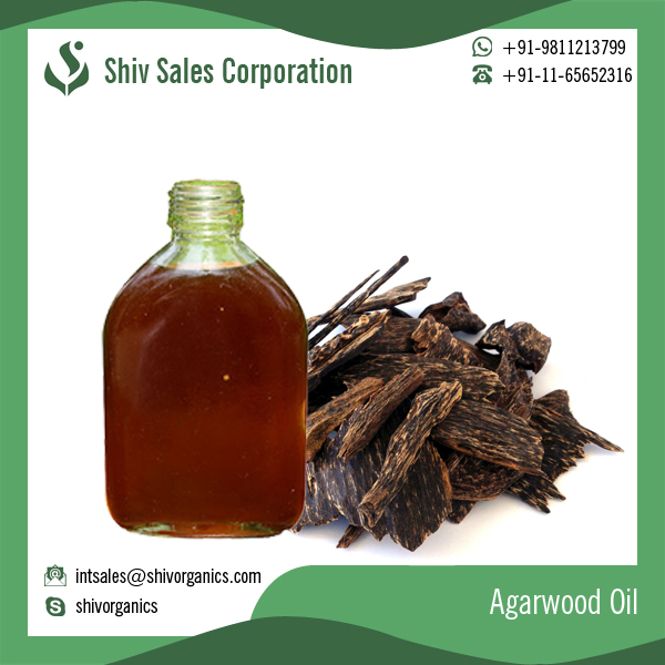 Top Quality Pure Agarwood Essential Oil at Best Price