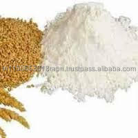 NEW CROP WHEAT FLOUR FROM INDIA