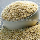 Hot Selling QUINOA SEEDS COMPETITIVE PRICE