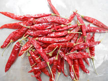 INDIAN DRY RED CHILLIES (SANNAM / MUNDU)