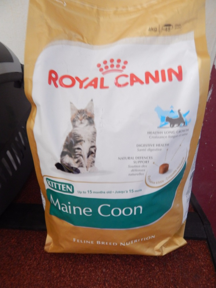 100% Pure Quality Royal Canin Maine Coon Kitten cat food