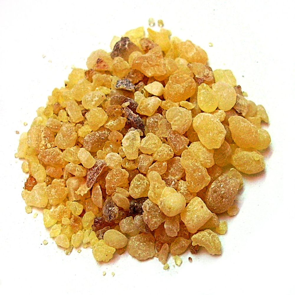 Boswellia Extract 65% / Frankincense Extract from Borg Export