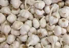 Fresh Pure White Normal White Purple White garlic from Manufacturer