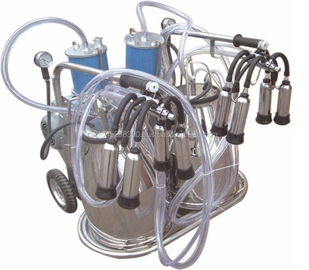 High Capacity Dairy Farm Use Piston Double Bucket Milk Machine(Y-002)