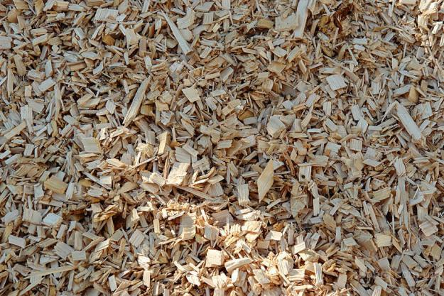 Hotsale the lowest price of wood chip from vietnam buy