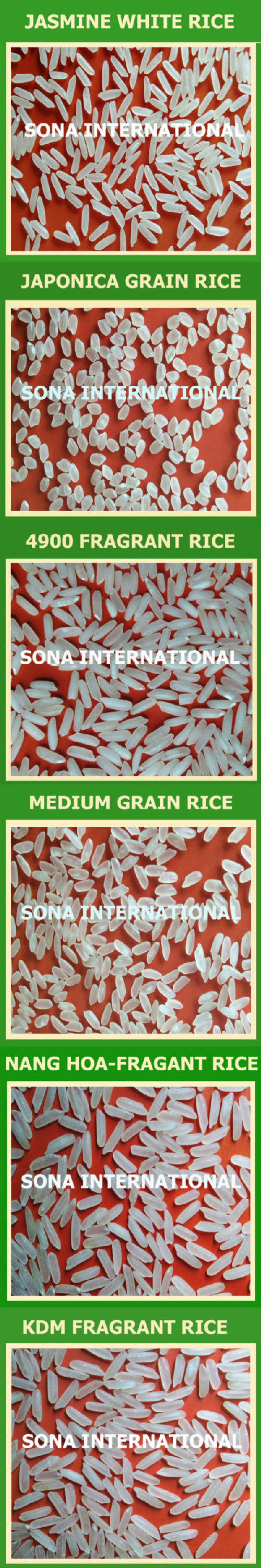 INFO@VINARICE.VN - Long white rice 5% - 100% broken