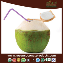 Sugar Free Coconut Water Powder Juice 10g - Rosun Natural Products Pvt Ltd INDIA