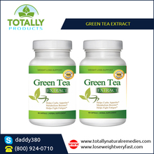 USA Manufacturer of GMP Certified Green Tea Extract for Weight Loss