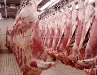 Halal Frozen Beef Meat/ Pork Meats, Lamb Meats and Offals