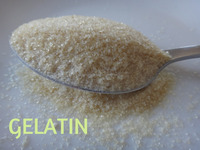 Food Grade Gelatin Powder