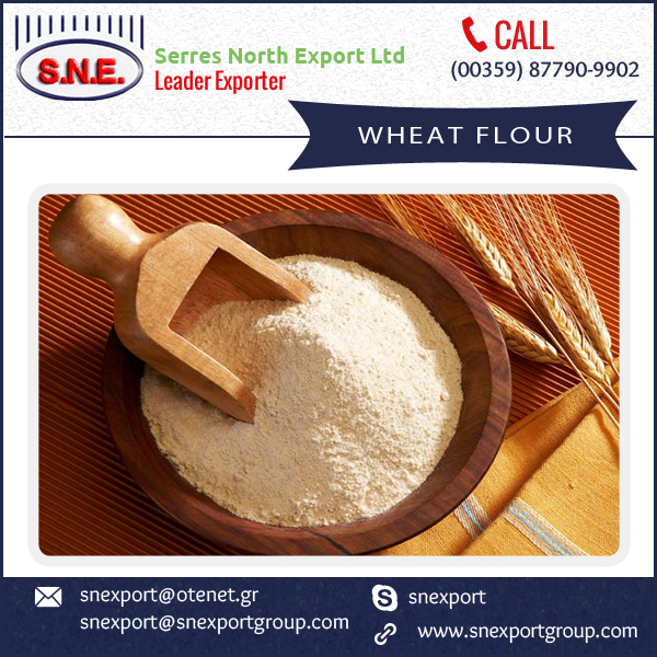 Superior Quality Low Gluten Wheat Flour available at Lowest Range