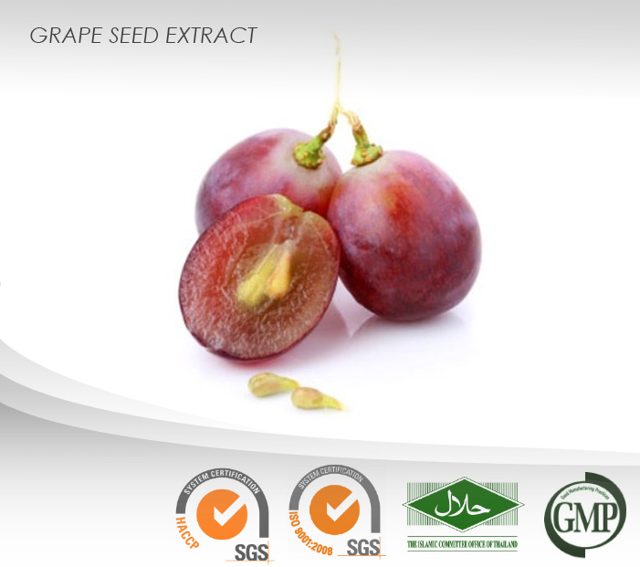 Grape Seed Liquid Extract : Proanthocyanidins : Lessening free radical damage, Anti-Aging, Anti-cancer, etc.