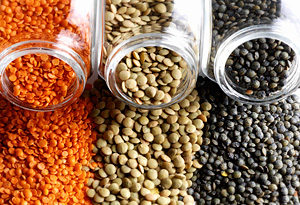 100% Red Split Lentils & Green Split Lentils , Lentils Beans Suppliers for Sale at cheap prices GOOD Grades and best Offer