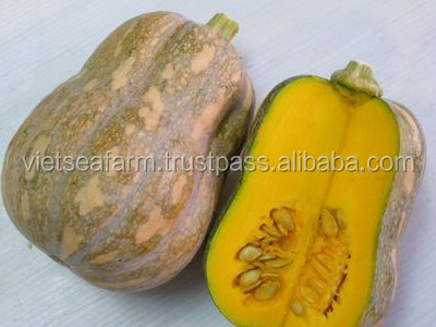 FRESH/FROZEN PUMPKIN - COMPETITIVE PRICE, BEST QUALITY