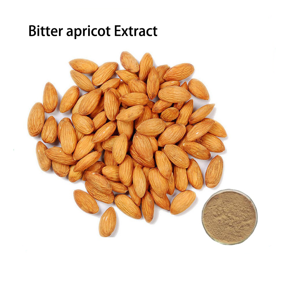 Herbal Extract Organic Bitter Apricot Seed Extract