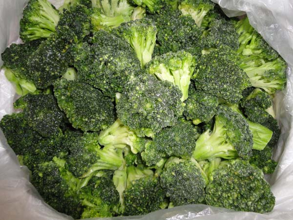 IQF frozen broccoli fresh broccoli and frozen vegetables