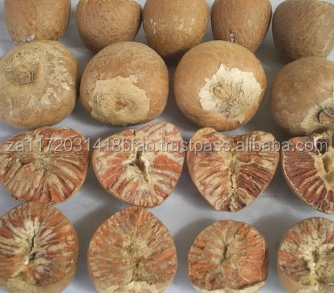 Quality Betel Nuts For Sale