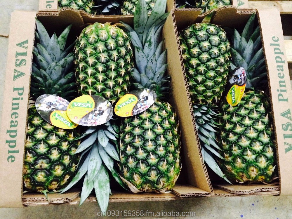 Costa Rican fresh pineapple