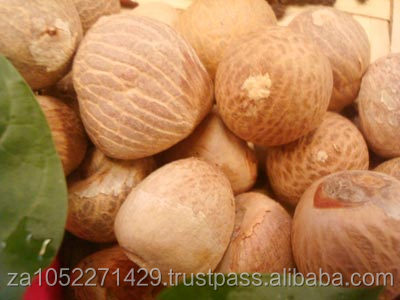 Betel Nut/Best quality/ competitive price /fast delivery time /wholesale supply.