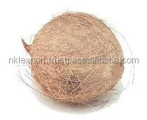LOW PRICE Coconut production in pollachi TRADER