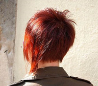 Blended Herbal Wine Red Hair Colour