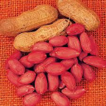 Peanuts at Lowest Price