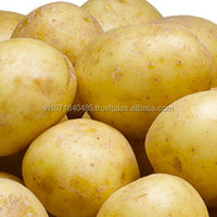 Fresh Potatoes from India for Export