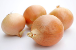 Best quality Fresh Onion, Fresh Yellow Onion, Yellow Onion, Onion