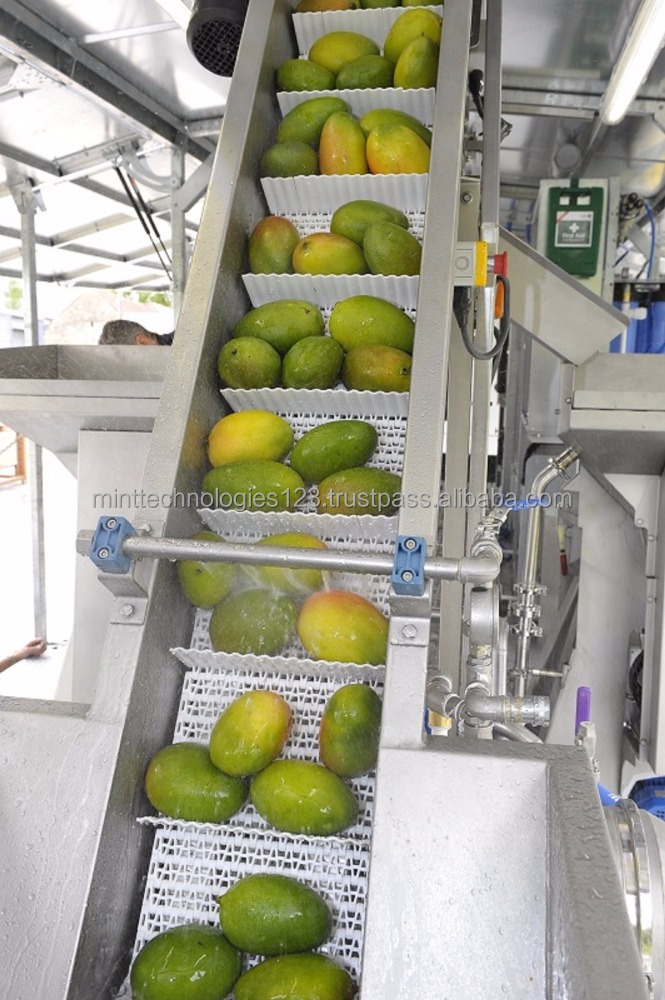 Juice Processing Machine/Juice Bottling Plant/ Juice Processing Small Plant