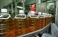 Crude and and Refined Palm oil