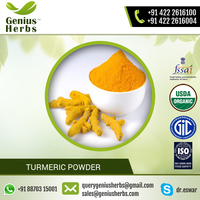 Hot Sell Pure Natural Turmeric Powder by Leading Manufacturer
