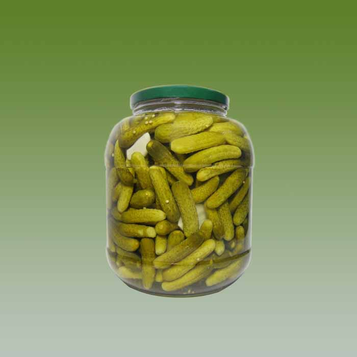 CANNED PICKLED GHERKIN IN GLASS JAR / DRUM