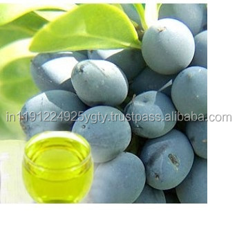 100% Pure Laurel Berry Essential Oil At Wholesale Price From India