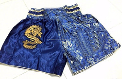 Professional Sports Fighting MMA Shorts