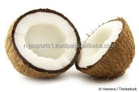 Indian Fresh quality coconut exporters