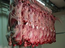 FROZEN BEEF - FOREQUARTER, HINDQUARTER AND FANCY MEATS