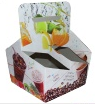 PAPER Juice Cup Carrier from HOTPACK DUBAI
