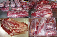 HALAL TRIMMED FROZEN BONELESS BEEF / BUFFALO MEAT FOR EXPORT !!! Gold Supplier !!!