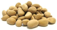 Pinon Nuts (Indian Nuts)