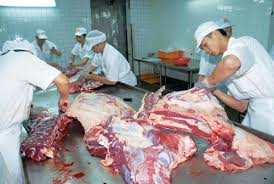 frozen beef price for sale